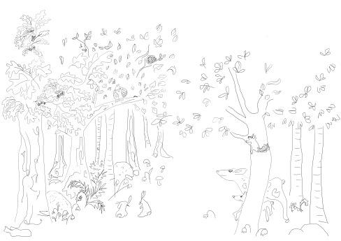 image forêt et animaux